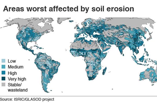 Экологи: изменение климата вызвано повреждением почвы